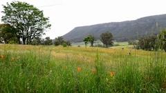 Victoria countryside hills, Australia Stock Footage