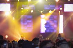 Rear View Of Audience Enjoying Music Festival Kuvituskuvat