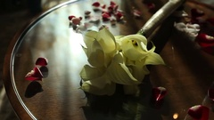 Wedding bouquet of callas lying on the table Stock Footage
