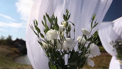 Bouquet of white flowers on the background of river bank Stock Footage