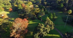 Aerial view of parkland Stock Footage