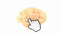 Brain with cursor isolated on white background Stock Footage