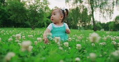 Adorable asian baby funny sitting on the grass in the Park Stock Footage