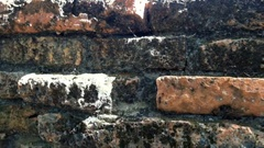 Close up old brick build wall in historical park Ayutthaya, Thailand Stock Footage