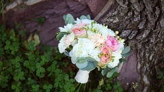 Bouquet of white, pink and beige flowers on the tree Stock Footage