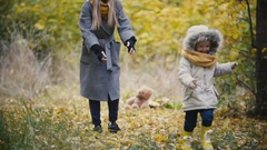 Young girl - little daughter laughs and plays catch-up with the mother in autumn Stock Footage