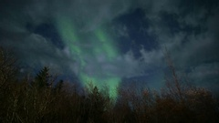 Aurora borealis northern lights forest trees clouds timelapse Iceland Arkistovideo