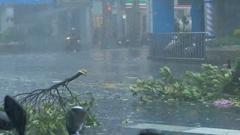 Tree and debri blowing on road Typhoon Megi Stock Footage