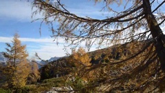 Park of the Ampezzo Dolomites, Italy Stock Footage