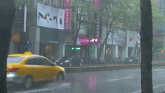 Trees in city street withtyphoon Wind and Rain Stock Footage