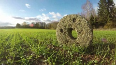 Ancient millstone in the fields, time lapse 4K Stock Footage