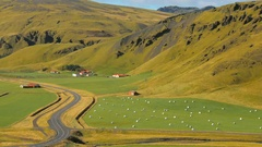 Quiet pasture landscape of icelandic farm near mountain on south of Iceland Stock Footage