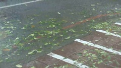 Water on road in typhoon wind and rain Stock Footage
