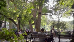 People walking and man on laptop in Washington Square Park benches in NYC Stock Footage