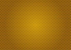 Bee's honeycomb illustration Stock Illustration