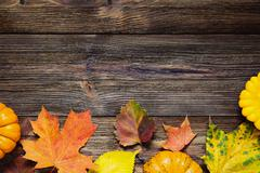 Fall background with fallen leaves Stock Photos