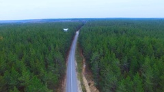 Spy drone flying over forest making spy photos, secret information, monitoring Stock Footage