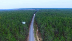 Drone flying over road in a forest. Aerial shot Stock Footage