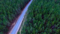 Camera flight over road in wood. Dense forest with empty road from above. Aerial Stock Footage
