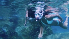 Couple snorkeling underwater in Virgin Gorda, British Virgin Islands Stock Footage