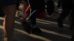 Shoes And Legs Of People Walking On Zebra Stock Footage