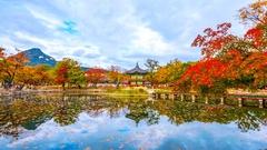 Time lapse Autumn of Gyeongbokgung Palace in Seoul ,Korea. Stock Footage