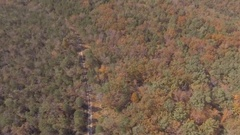Aerial over road cutting between heavy wooded area. Stock Footage