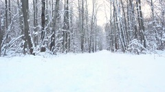 Young Sportsman Running Through Snowy Forest. Training and exercising outdoor Stock Footage
