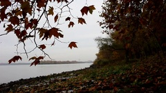 Autumn on the bank of the Dnieper Stock Footage