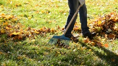 Worker rakes leaves out in the autumn. Stock Footage
