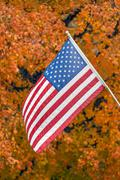 Old Glory and Glorious Autumn Color Stock Photos