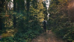 Man walks along a forest path with a stick in his hands. Stock Footage