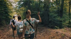 A group of tourists out of the woods, walking along the forest path. Stock Footage