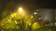 Tropical Rain Storm Drenches Palm Trees At Night Stock Footage
