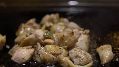 Slow Motion Cuisine chiken. Cook a Raw chiken Meat on the Grill in a kitchen-Dan Stock Footage
