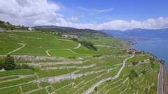 Scenic vineyard Lavaux UNESCO aerial shot Stock Footage