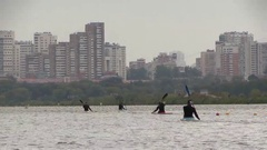 Kayakers and canoeists train at the city artificial rowing channel Stock Footage