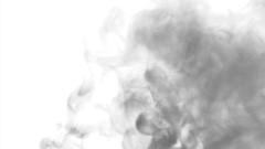 Black cloud smoke / ink on water on white background Stock Footage