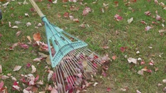 Raking up leaves outside autumn Stock Footage