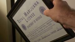 Retail marijuana license colorado 4 Stock Footage