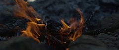 Blazing campfire at campsite Stock Footage