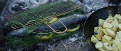 Organic fish and potatoes being cooked at campsite Stock Footage