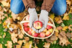 Woman with basket of apples at autumn garden Kuvituskuvat