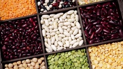 Range of different types of beans Stock Footage