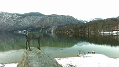 Beautiful Bohinj Lake, Slovenia At Winter Stock Footage