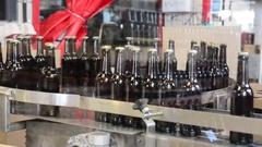 Full beer glass bottles moving on a conveyor line Stock Footage