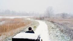 Man riding one horse carriage on winter road Stock Footage