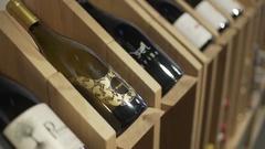 Rack of Wine in Cellar Stock Footage