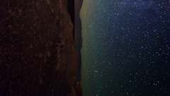 Astro Timelapse of Milky Way over Native American Petroglyphs -Vertical Shot- Stock Footage