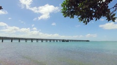 View of cornwallis wharf on a sunny day under the trees. Stock Footage